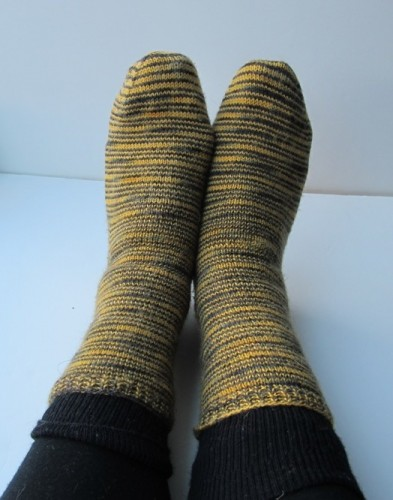 Lorna's Laces Shepherd Sock in Bee Stripe.